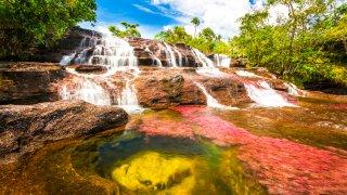 Caño Cristales, la rivière aux 7 couleurs