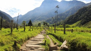 Colombia's Green Side
