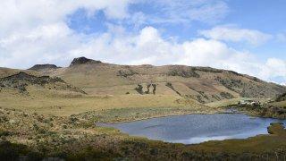 Parc Los Nevados en Colombie