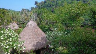 Le village de Tayronaka en Colombie