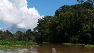 Voyage en Amazonie en colombie